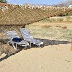 Camouflage netting vs umbrella?