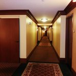 Neat and very well maintained Hallways