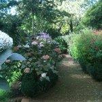 Palheiro Gardens nextdoor