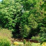 Dilston Garden