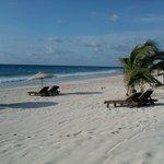 the azucar beach