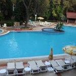Palmariva Club Festival (бассейн)