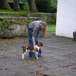 my son with the very friendly dog on the courtyard #1