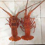 Befor make a grill (boiled lobster)