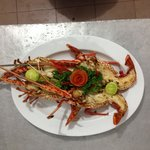 Day special grill lobster.....!!!