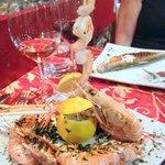 Crayfish & Shrimp