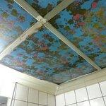toilet ceiling