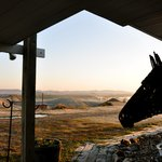 Sculptured horse profiled with the Badlands sunrise in the background.