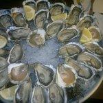 plateau à 34€, 14 huîtres chacune avec 7 provenances différentes