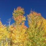 Steamboat fall colors