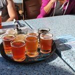 The beer sampler