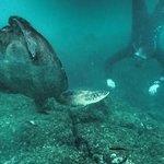 Galapagos Wildlife Interaction