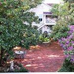 Walkway/courtyard