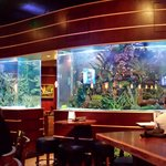 Fish Tank at Kona Grill