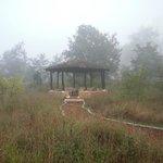 Pavilion / Campfire area