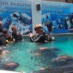 Adam teaching in the pool