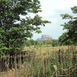 View of Sigiriya from Hotel