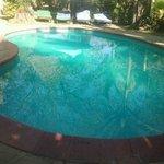 Loasis swiming pool