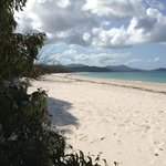 Happy to see Whitehaven Beach