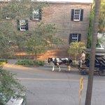 View from second floor veranda horses heading home