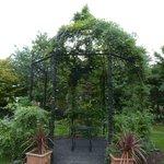 flowering arch in gardens