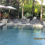 jardin avec petite piscine en pleine ville