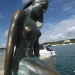 mermaid in mahon harbour