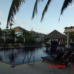 Pool und Tages-Bar