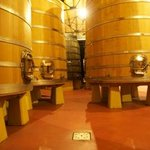 Winemaking in progress