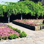 Eastgate House Gardens