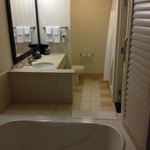 View of bathroom including whirlpool bath from bedroom