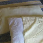 Pillow cases - no protectors - very thin covers non uniform.