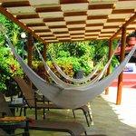 Pool side hammocks