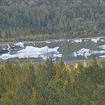 Icebergs from glacier in river - Anchorage-Seward