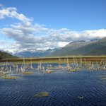 Scenic View - Anchorage-Seward