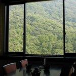 レストランからの深緑の眺め