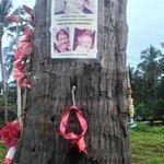 Memorial Again
