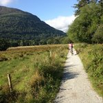 Bike trails in Killarney National Park