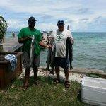 More barracudas