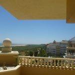 vue de la terrasse: coté sud