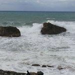 l'ocean en action