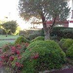 jardin agréable