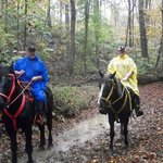 Our rainy trail ride