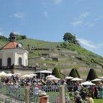 Elbterrasse am Schloss Wackerbarth