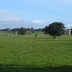 The view from across the Park where Capability Brown did his watercolour painting