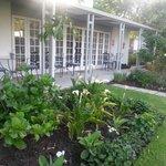 Garden/restaurant
