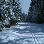 Perfectly groomed trails