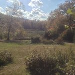 Fall day at the Botanical Garden