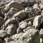 Boulders in River of Rocks