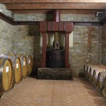 Part of our winery tour at Agricola Monterinaldi.